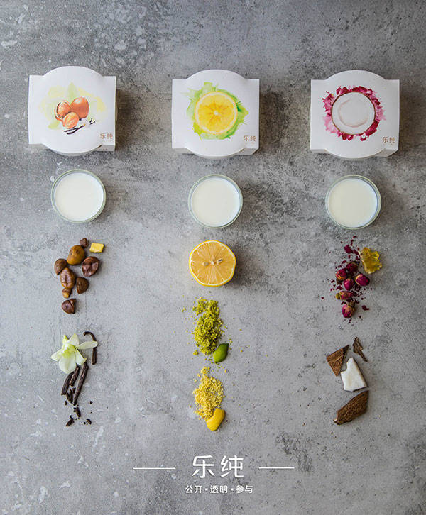 Le pur乐纯:一盒手工酸奶的小确幸 - 初创公司 - 创业邦