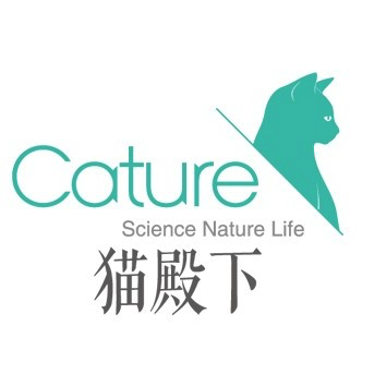 Cature小壳